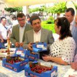 Cerezas de Torres y Castillo de Locubín recorrerán la provincia en la V Muestra de esta fruta organizada por Diputación