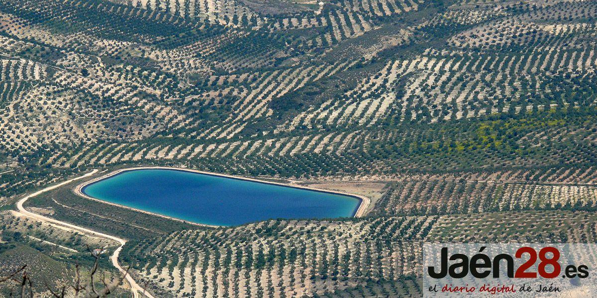 COAG Jaén ve en el cambio de Gobierno en Estados Unidos una oportunidad para la eliminación de los aranceles al aceite de oliva