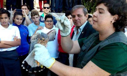 """Celebración del """"Día Mundial de la Aves"""" en el colegio """"Santa María de los Apóstoles"""""""