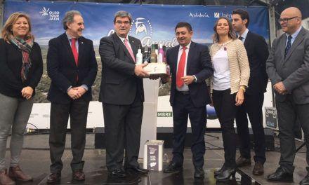El oro líquido jiennense inunda Bilbao durante la Fiesta del Primer Aceite que organizan Diputación y Junta