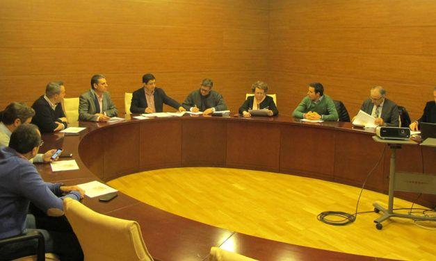 12 millones de euros para el Olivo Arena,