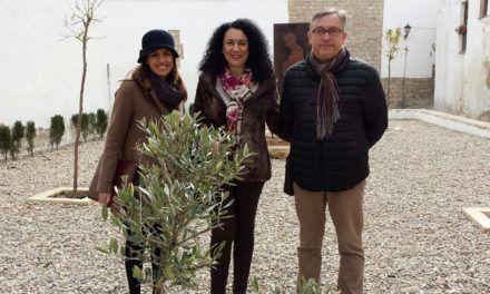 Plantados tres olivos en la judería de Jaén con motivo de la festividad del Año Nuevo de los Árboles
