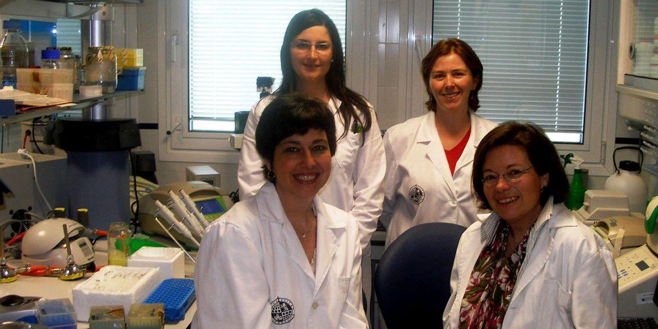 Investigadores de la Universidad de Jaén demuestran los beneficios de una dieta rica en aceite de oliva virgen extra como modulador de la microbiota intestinal