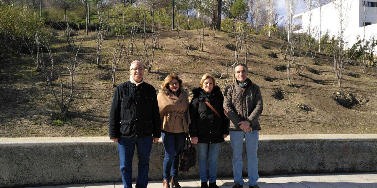 El Ayuntamiento acomete trabajos de accesibilidad en el Parque de las Fuentezuelas