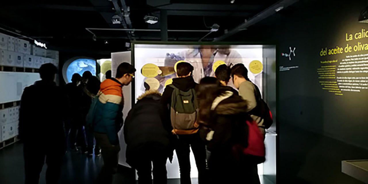 Escolares de Úbeda visitan el Museo Terra Oleum