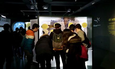 Cerca de un millar de escolares de la provincia visita el Museo Terra Oleum durante el primer trimestre del año