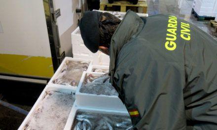 Intervienen 426 Kg. de pescado inmaduro en Jaén