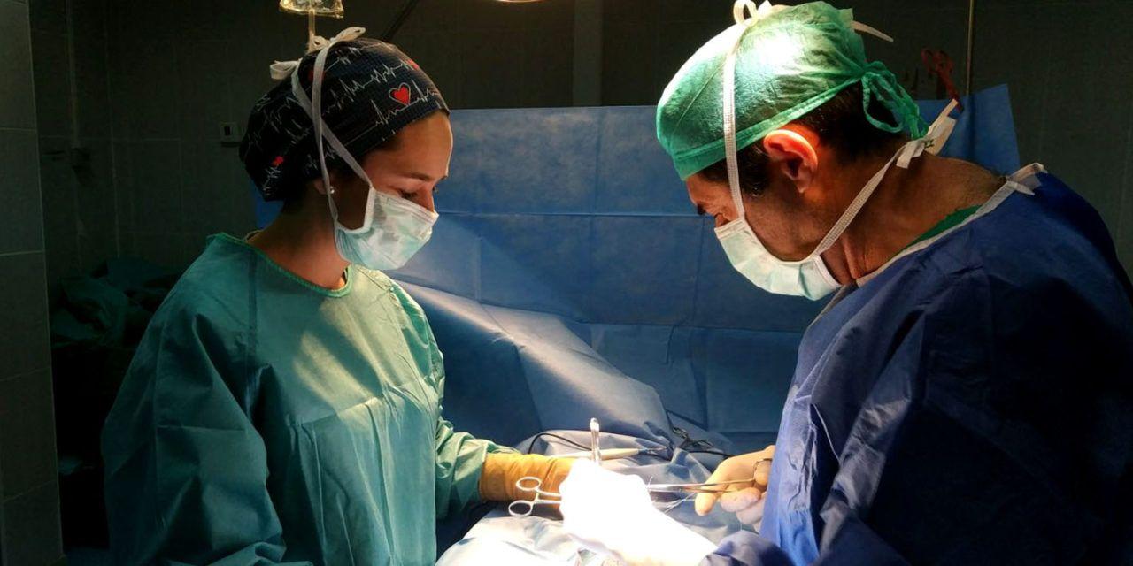 Cuatro profesionales sanitarios de hospitales públicos jiennenses han atendido a 70 pacientes en los campos de refugiados saharauis de Tinduf