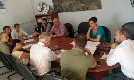 A consulta popular la celebración de la Carrera Urbana Internacional 'Noche de San Antón' entre los meses de octubre y enero