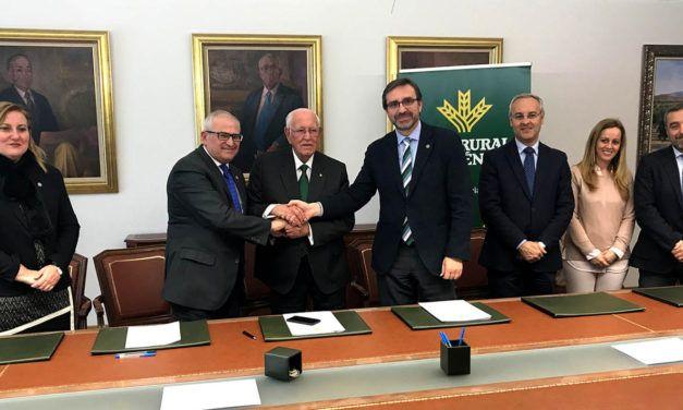 Constituida la Cátedra Caja Rural de Jaén José Luis García-Lomas Hernández de Economía, Comercialización y Cooperativismo Oleícola de la Universidad de Jaén