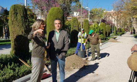 Trabajos de reforestación en el Parque de Adolfo Suárez