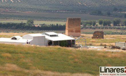 Diputación organizará en Semana Santa visitas teatralizadas y excursiones para mostrar la riqueza de su patrimonio ibero