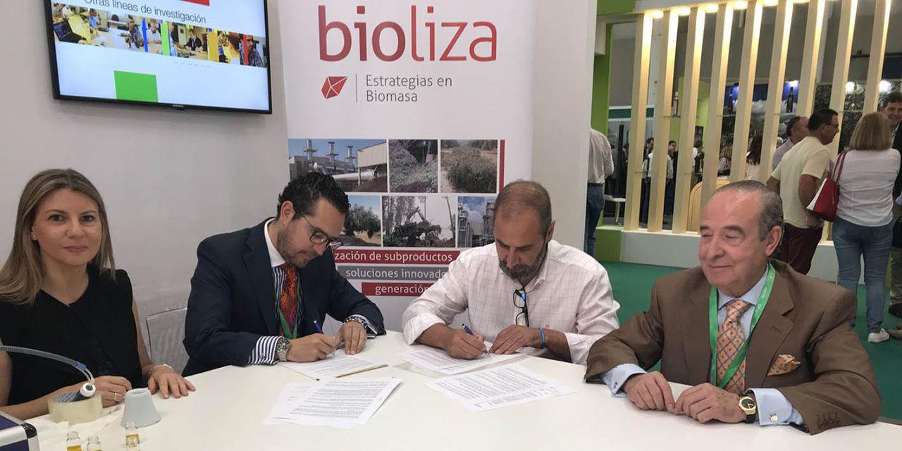 La Universidad de Jaén y el Grupo Oleícola Jaén renuevan el acuerdo de investigación en materia de valorización energética de subproductos del olivar