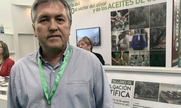 La UJA da a conocer en EXPOLIVA 2019 las líneas de investigación que desarrolla relativas al aprovechamiento de la biomasa del olivar a través de biorrefinerías