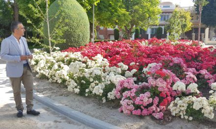 El Ayuntamiento realza con nuevas plantaciones de flores el parque Alameda de Adolfo Suárez