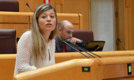El PSOE de Jaén muestra satisfacción y confianza en los seis socialistas jiennenses con representación en el congreso y el senado