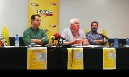 """COAG: """"Está en peligro el olivar tradicional, centenario y sostenible"""""""