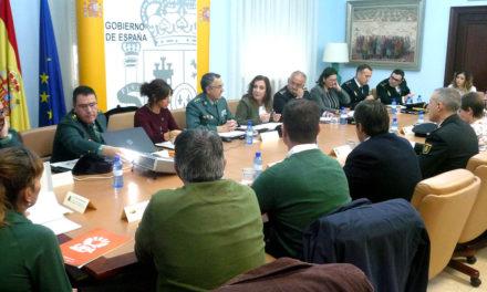 Más de un millar de agentes de la Guardia Civil para la campaña de aceituna en Jaén