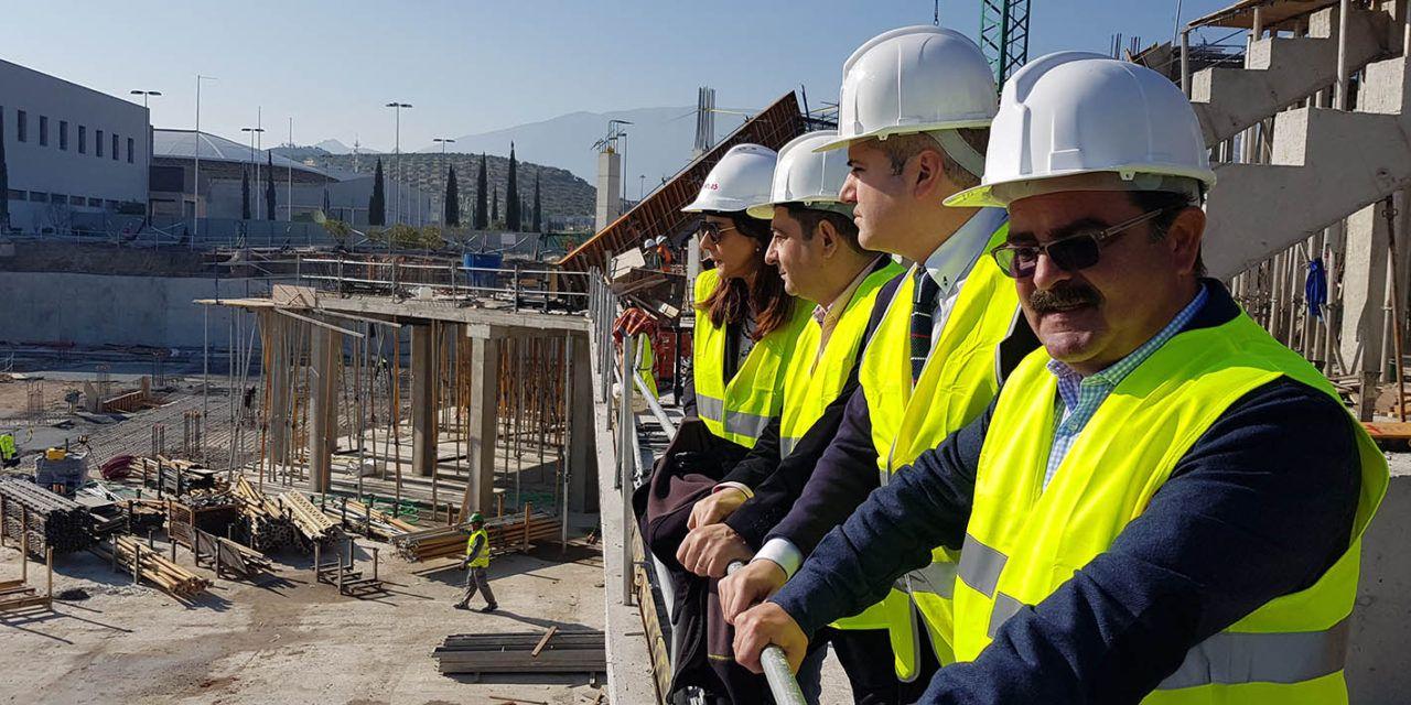 El esperado Olivo Arena estará listo a finales del verano