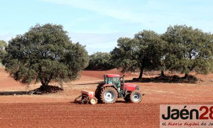 Diputación incrementa hasta los 92.000 euros sus ayudas para asociaciones en materia agrícola y medioambiental