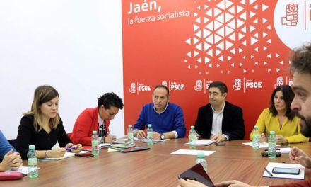 """El PSOE afirma que ha habido un """"vendaval de recortes en Jaén"""" en el primer año de nuevo gobierno en la Junta"""