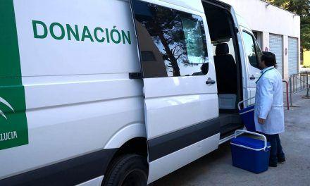 El Centro de Transfusión Sanguínea de Jaén programa 8 salidas para donaciones esta semana