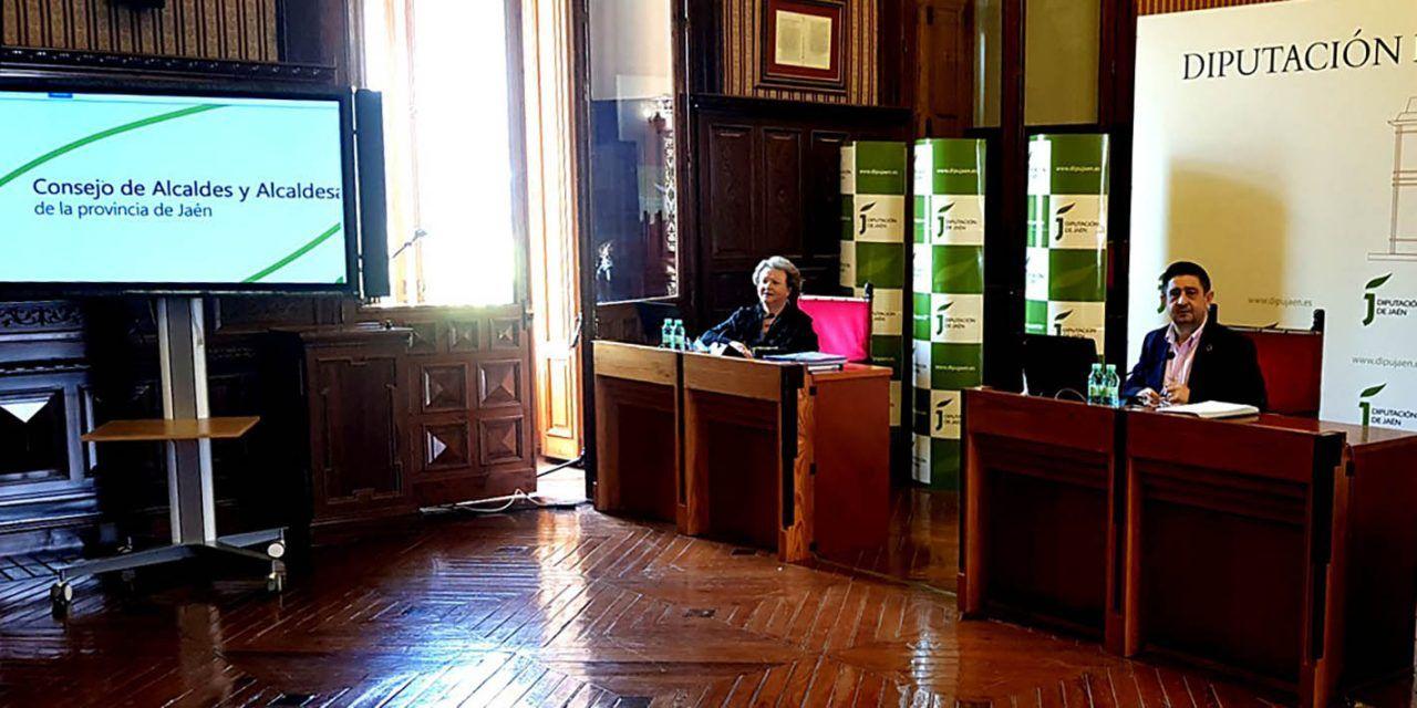 El Consejo de Alcaldes aprueba que los 15 millones de euros del plan extraordinario de apoyo sean para servicios municipales