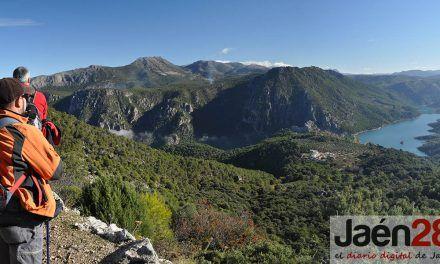 La UJA, miembro de la red 'Medforval' para la puesta en valor y conservación de los bosques de la cuenca mediterránea