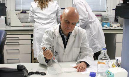 Un estudio de la UJA muestra que el aceite de oliva virgen extra causa un cambio en la flora bacteriana intestinal relacionado con la prevención del cáncer colorrectal