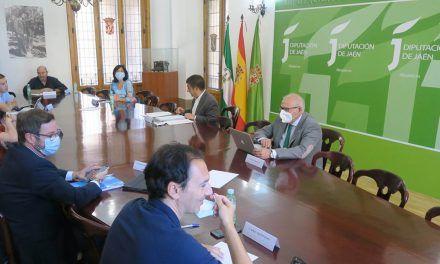 Las propuestas de recuperación planteadas por el CES Provincial marcarán el presupuesto de la Diputación para 2021