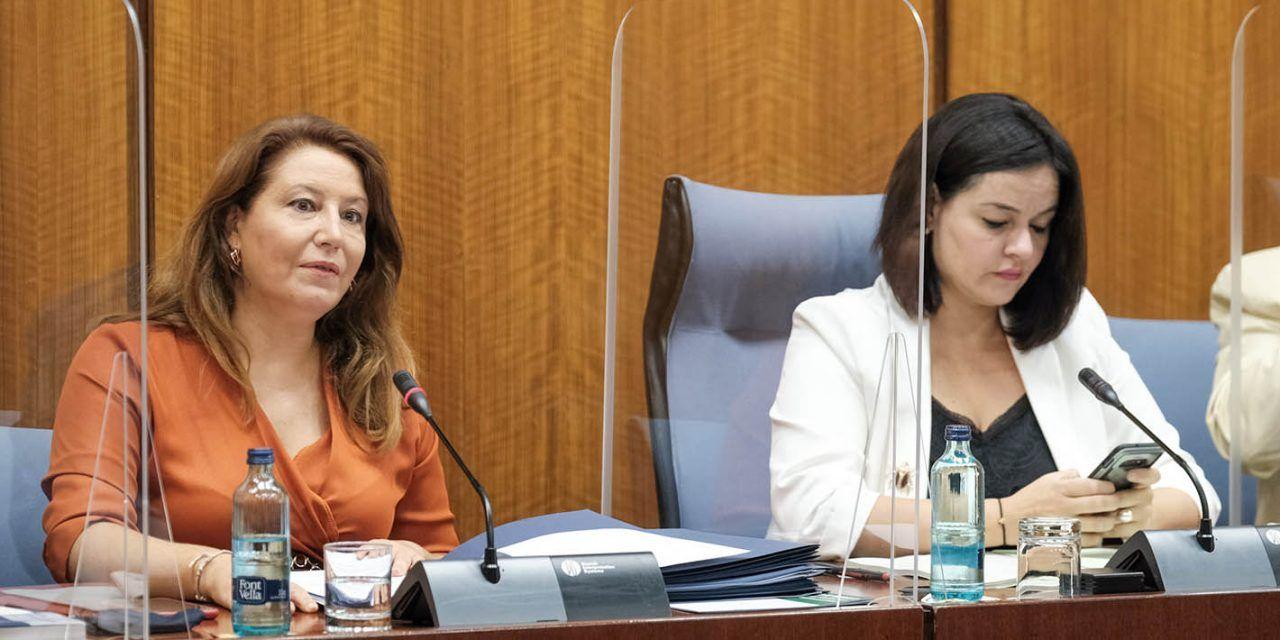 La consejera de Agricultura anuncia medidas  preventivas que incluyen test a los temporeros desplazados a la campaña de la aceituna