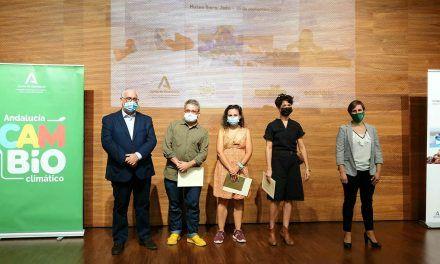Tres creadores andaluces, reconocidos en el VIII Certamen Reciclar Arte