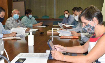 Agricultura mantiene un diálogo permanente con el sector olivarero por una campaña segura