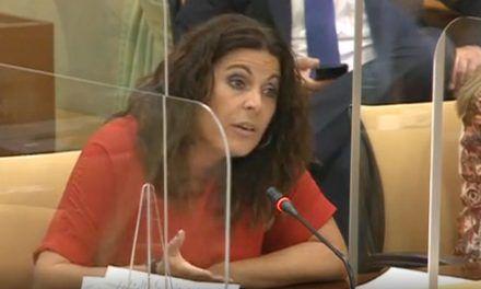 """El PSOE critica el """"retroceso"""" en la Ley de Dependencia por """"desinterés"""" de la Junta"""