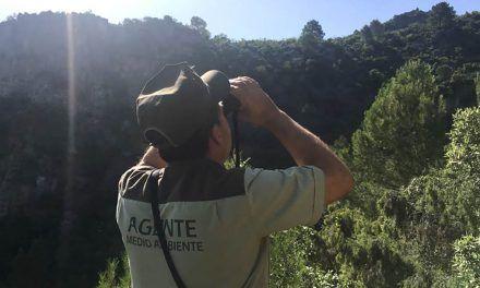 La Junta impulsa un plan especial de control  para detectar artes prohibidas en cotos de caza