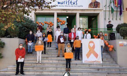 VÍDEO | Mañana de protestas contra la reforma educativa en los centros privados y concertados de Jaén