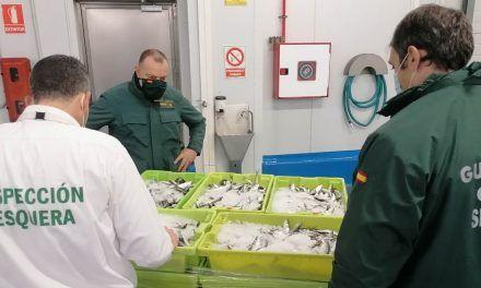 SUCESOS | Intervenidos 464 Kilogramos de pescado no apto para el consumo en el Polígono Guadiel