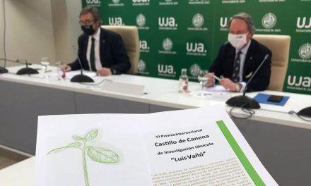 Presentado el VI Premio Internacional Castillo de Canena de Investigación Oleícola 'Luis Vañó'