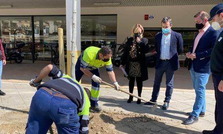 Jaén incorpora 1.200 árboles nuevos en su casco urbano