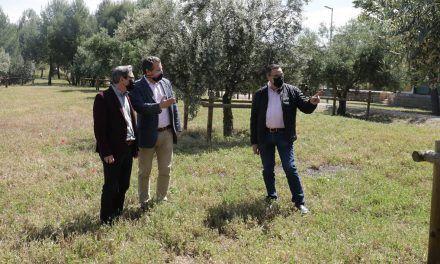 Una treintena de variedades de olivar conforman un jardín promovido por la Diputación en la Vía Verde del Aceite