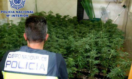 SUCESOS | La Policía Nacional desmantela en Úbeda un punto negro de venta de drogas