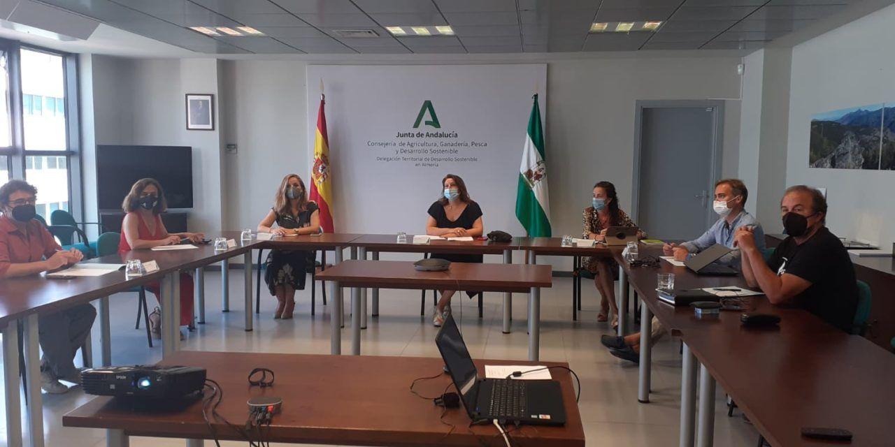 Infoca refuerza las tareas de vigilancia mediante vuelos preventivos sobre zonas forestales de Andalucía durante la ola de calor