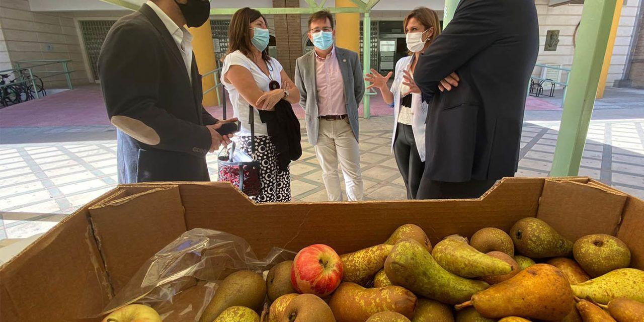 La UJA celebra el Día de las Universidades Saludables en sus campus de Jaén y Linares con el reparto de fruta de temporada y una campaña de extracción de sangre